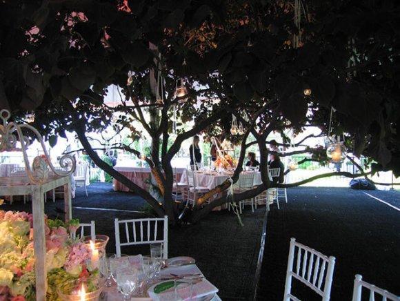 custom-installation-tent-and-floor-built-around-tree