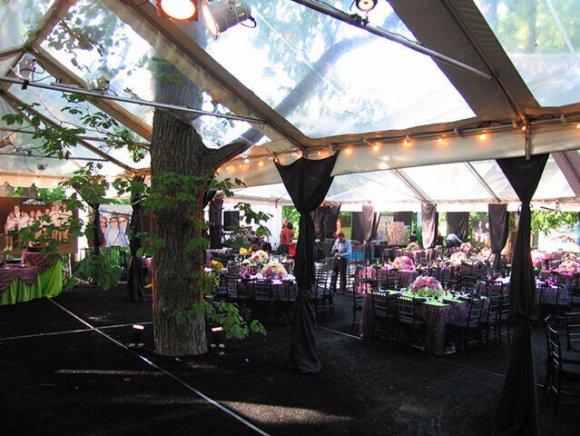 custom-installation-tree-though-tent