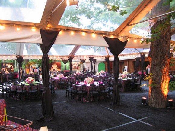 custom-installation-tree-through-tent-2